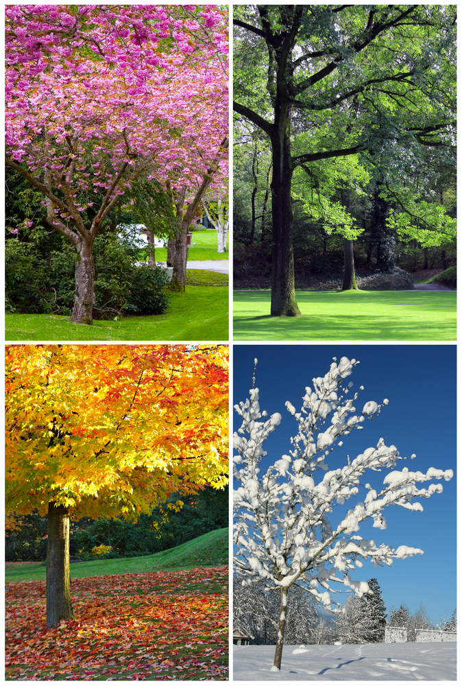 asks: Why are the seasons called winter, spring, summer, and fall ...
